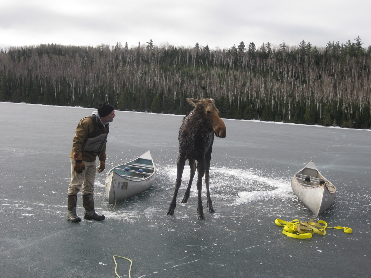 Biden gives hope to defenders of the Boundary Waters as Chilean mining giant seeks copper, nickel