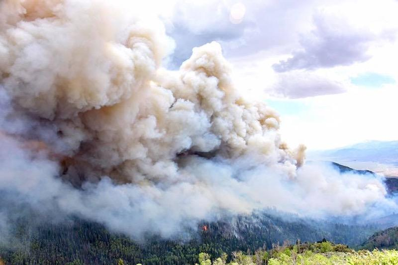 What's in that wildfire smoke you're breathing? A toxicologist explains.